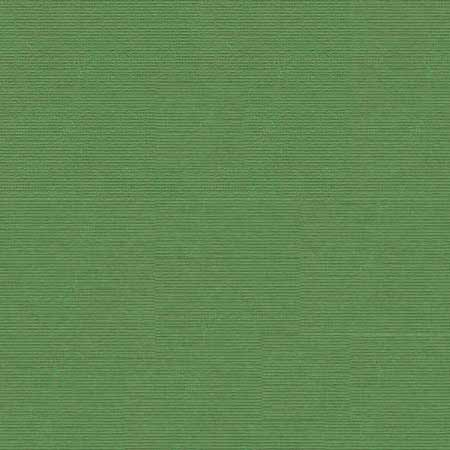 Cardstock - Frosty Pine - CC260
