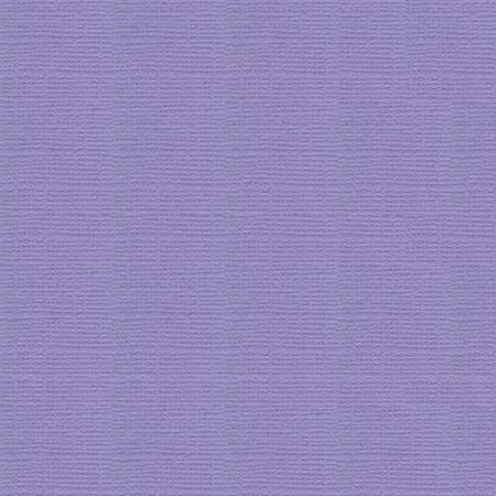 Cardstock - Wild Pansy - CC550